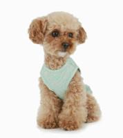Luxury Frilled Dog Dress - Blue / Gold