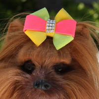 Angela Bow Dog Collar & optional Leash