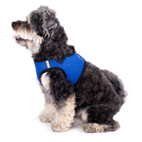 Worthy Dog Step-in Sidekick Dog Harness - Chomp Whales