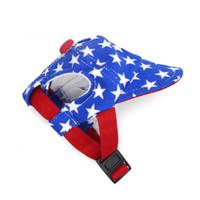 Star Patriotic Pet Dog Visor / Hat