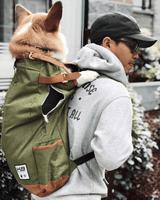 Urban Pet Backpack Carrier - Olive Green