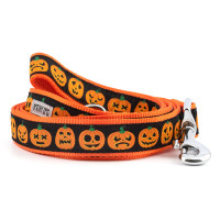Jack-O-Lantern Pet Dog Collar & Lead Collection