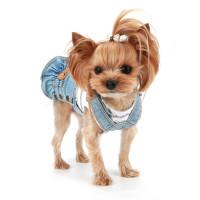 Puppy Angel Ohkio Denim Suspenders cancan skirt - Lt Blue