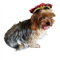 Swashbuckler Pirate Costume Pet Dog Hat
