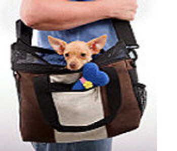 Hemp Dog Carrier - Brown