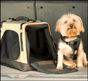 Dog Carrier - Wander Carrier - Collapsible and expandable