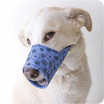 Fabric Dog Muzzle - Blue Bandana