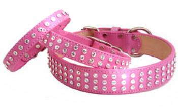 Madison & Maxwell Swarvoski Crystal Leather Dog Collars - Pink