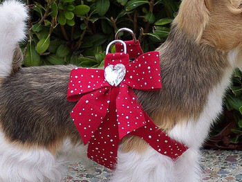 Susan Lanci Red Silver Stardust Tail Bow Harnesses