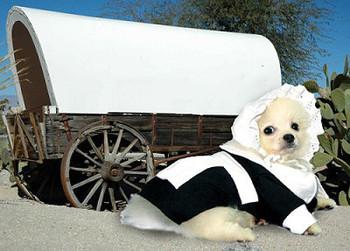 Costume - Pilgrim Girl