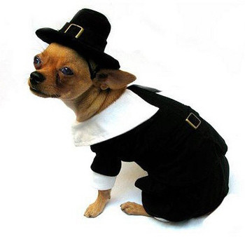 Costume - Pilgrim Boy