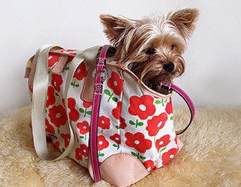 Daisy Pet Dog Carrier