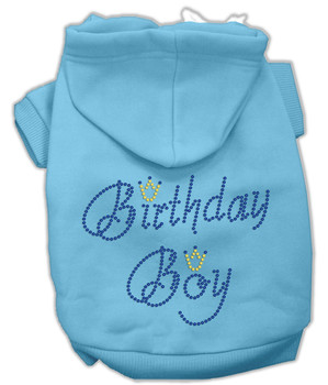 Birthday Boy Rhinestone Dog Hoodie