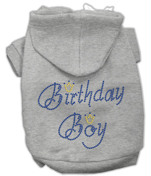 Birthday Boy Rhinestone Dog Hoodie