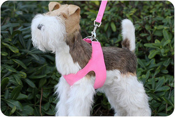 Perfect Pink Dog Harness by Susan Lanci Designs