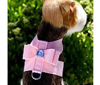 Big Bow Tinkie Harnesses by Susan Lanci - Animal Prints