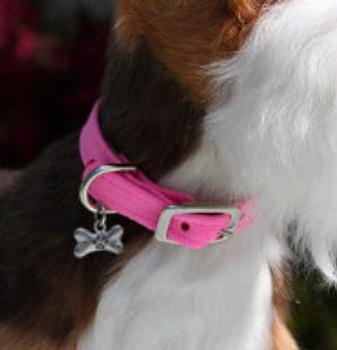 "Plain 1/2"" Ultra Suede Dog Collars - Neutrals"