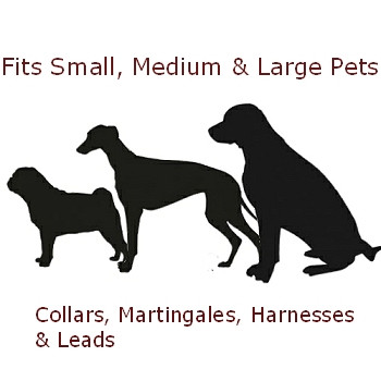 Dog Collar - Black Scallop - 3/4 & 1 1/4