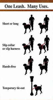 Sparky's Multi-Function Dog Leash