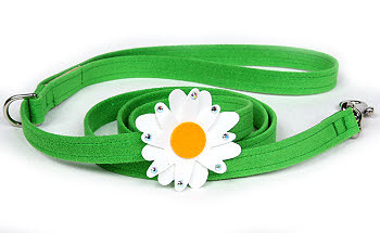 Large Daisy Leash - Susan Lanci Designs