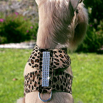 Giltmore 4 Row Crystal Dog Tinkie Harnesses