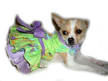 Tinkerbell Harness Dog Dress