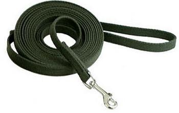 Olive Cotton Web Dog Training Leads