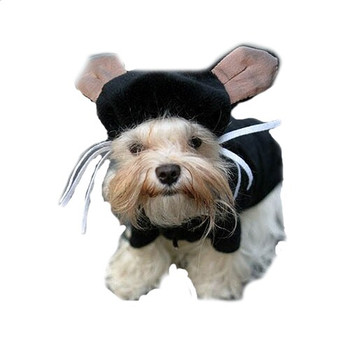 Kitty Kat Dog Costume