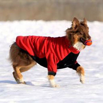 Dog Snow Jacket - Red/Black - 5 - 110 lbs