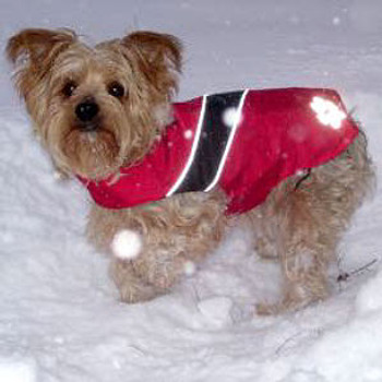 Umber Dog Jacket - 5 - 110 lbs