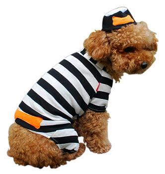 Jail Bird Dog Costume