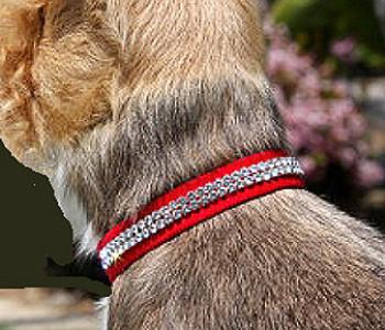 Giltmore 3 Row Collars