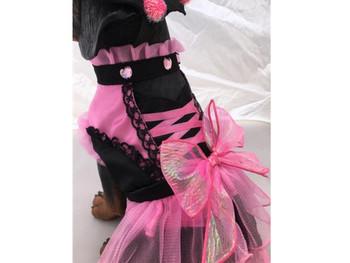 Pet Dog Costume - Pink PomPom Witch