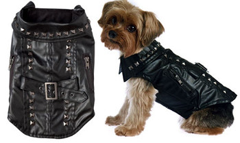 Studded Motorcycle Dog Jacket / Coat
