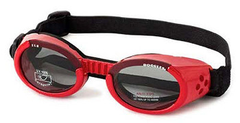 Shiny Red ILS Doggles with Light Smoke Lens Dog Sunglasses