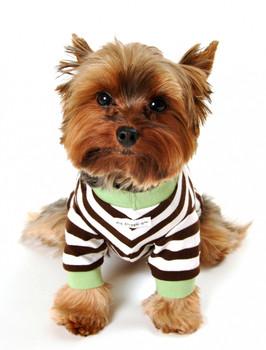 Crown Striped Dog Tee