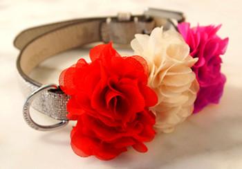Floral Dog Collar Sliders
