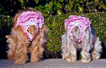Ruffled Dog Panty - Pink Gingham