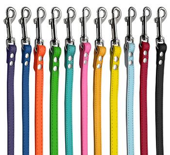 Colorful Leather Dog Leash