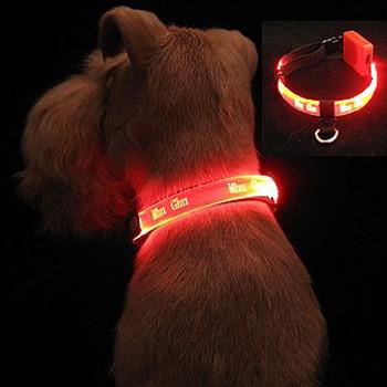 Small Dog LED Collars