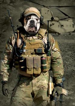 JTAC Warhog Bulldog T-Shirt or Nightshirt