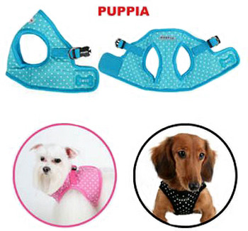 B Style Dog Harness - Dotty & Lead