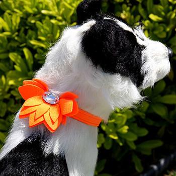 Water Lily Ultrasuede Dog Collar by Susan Lanci - Custom