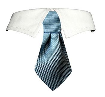 Blue Formal Neck Tie & Dog Collar