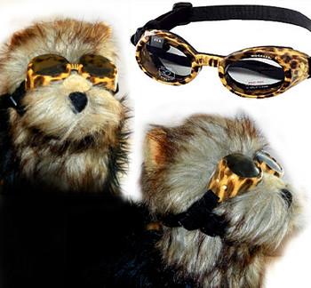 Leopard Print Frame ILS Dog Sunglasses