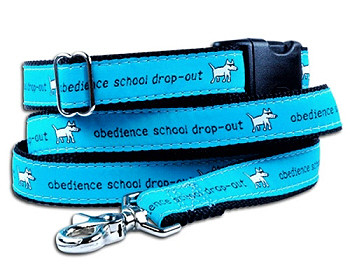 Obedience School Drop Out Dog Collars and Leash