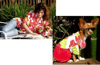 Cabana Dog Shirt - Fruit Punch