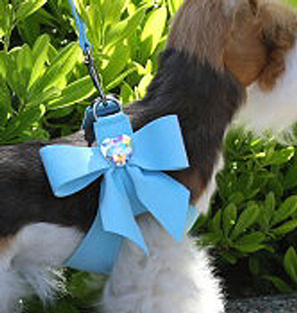 Susan Lanci Tiffi Blue Tail Bow Step-In Harnesses