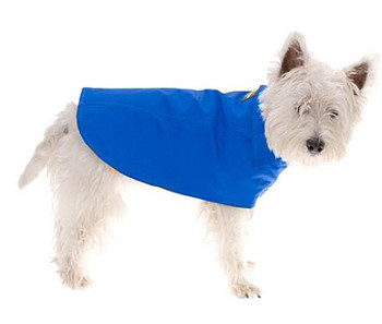 Azur Blue Dog Raincoat by Hamish McBeth