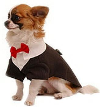 Ruff Ruff Dog Tux